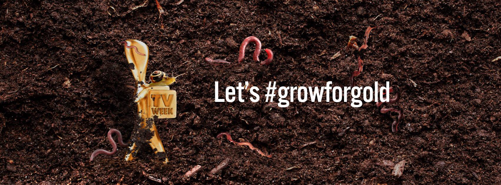 Council calls on residents to #GrowForGold
