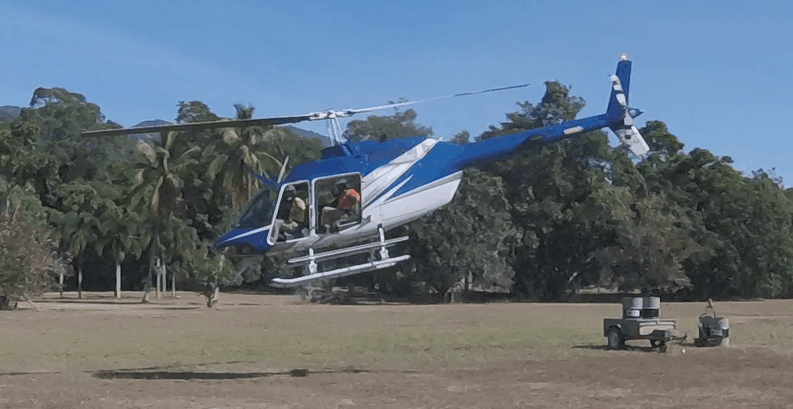Hiptage Helicopter