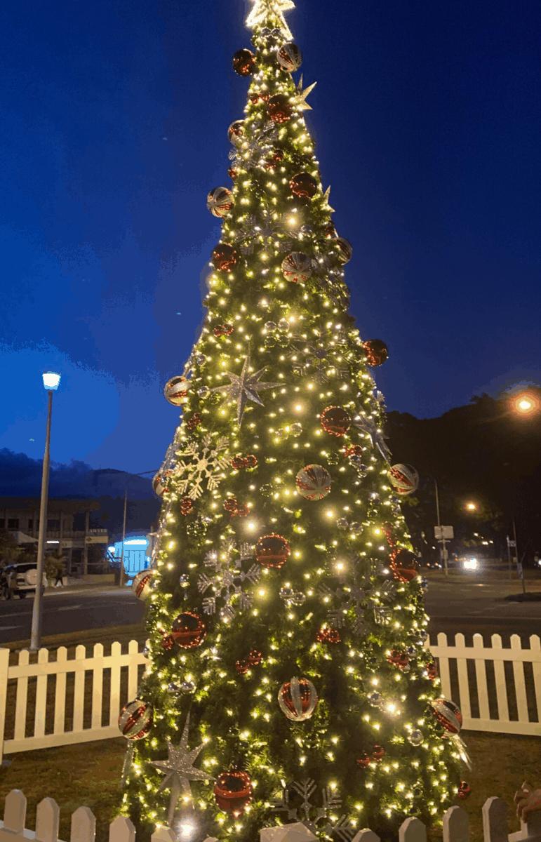 Mossman Christmas Tree 2019