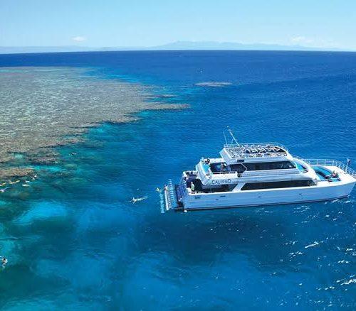 calypso reef port douglas hot and steamy festival