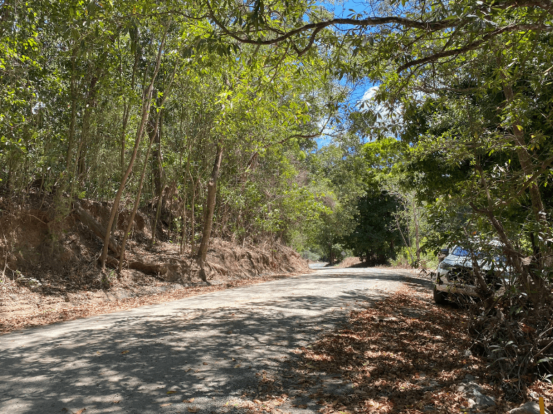 Cape Tribulation-Bloomfield Road Pavement and Culvert Upgrade