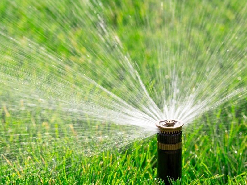STOCK - Water Restrictions - Sprinkler