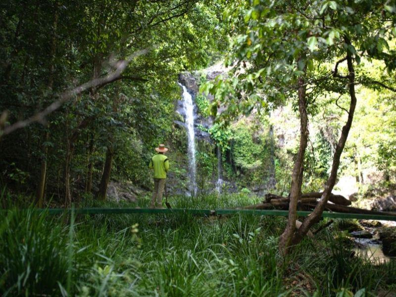 Daintree Intake - Waterfall