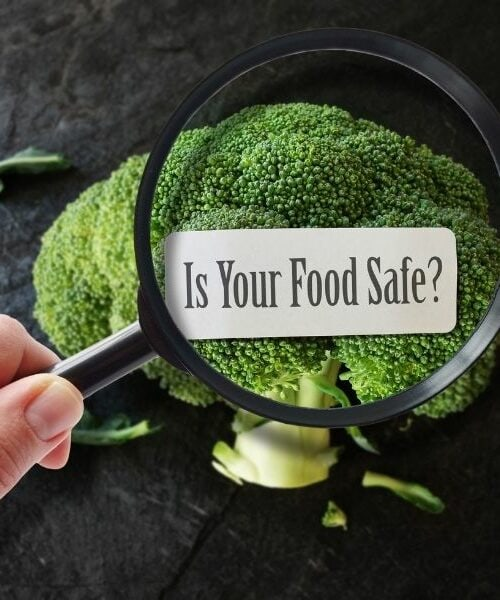 STOCK _ Food Safety